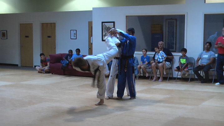 Taekwondo_adult_IMGA02011