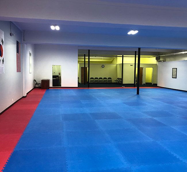 Taekwondo Bronxville
